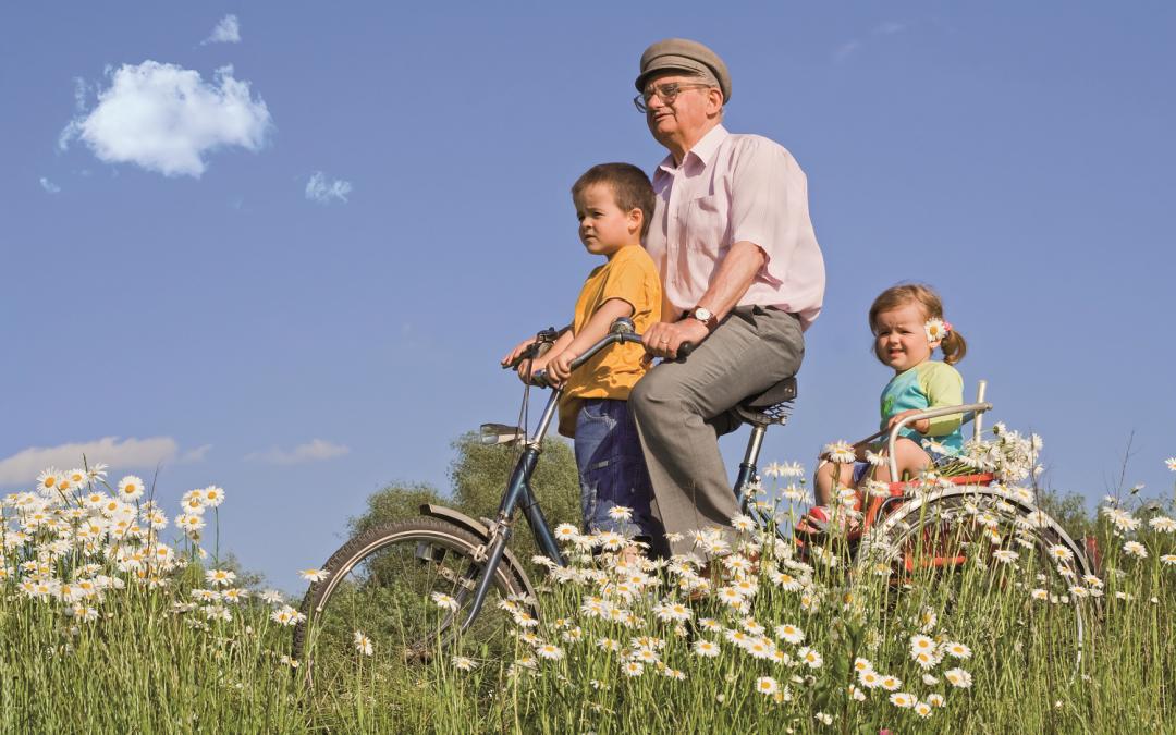 La sécurité routière et les seniors